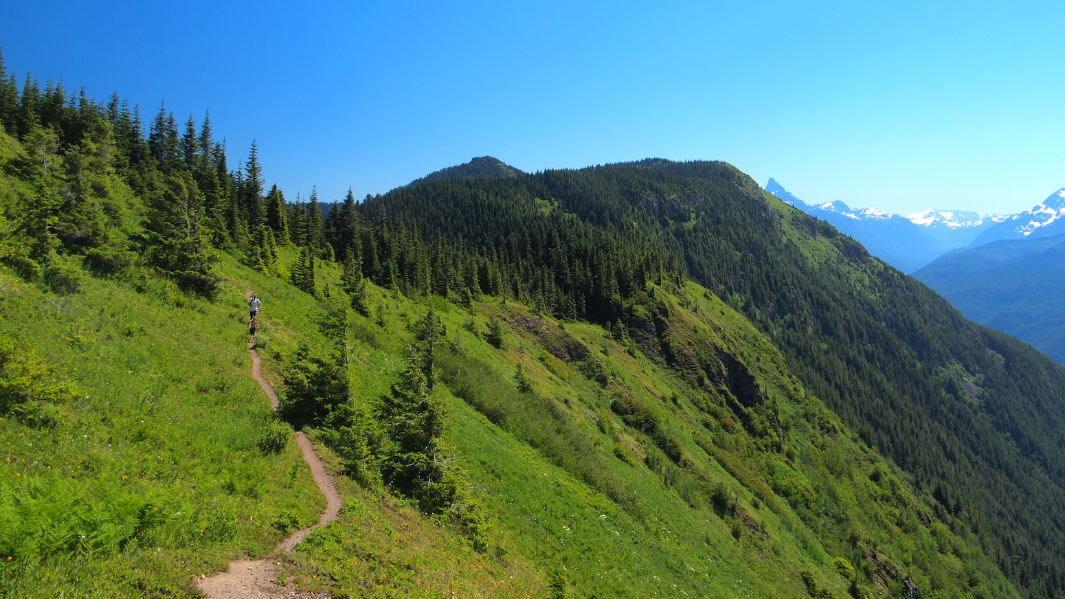 Josh and Serge coming back up to Elk Mountain. On the right is the middle bump and the high point in the back ground is Thurston Mountain.