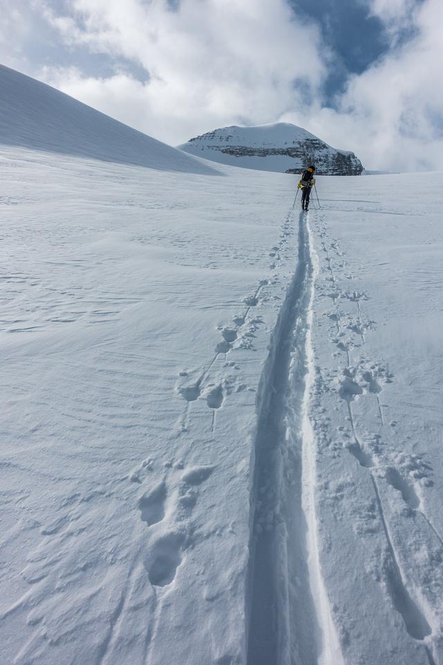 Ascending the Peyto Glacier.