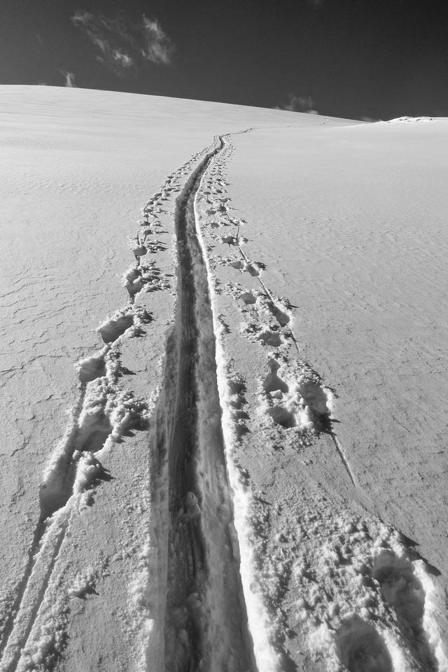 Ascending towards Mount Baker.