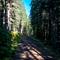 Bluerock Mountain