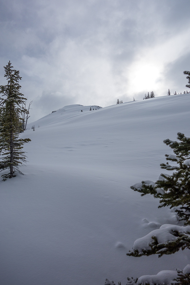 We hit tree line. The wind and winter conditions really picked up once we broke through the trees.