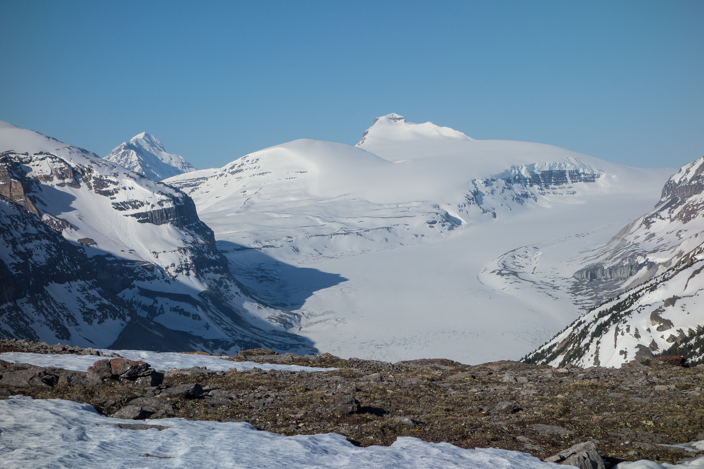 An excellent view of the Saskatchewan Glacier and Castleguard Mountain. The Castleguard Meadows are left of the shadow in the center of the photo.