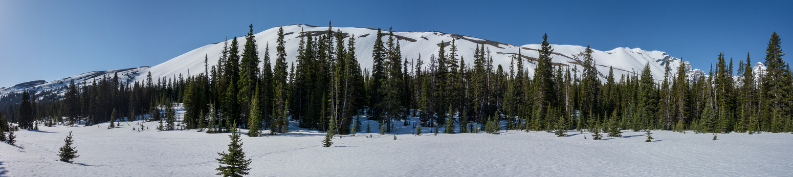 The entire Parker Ridge from hwy 93. I traversed from right to left from the Hilda Ridge parking lot.