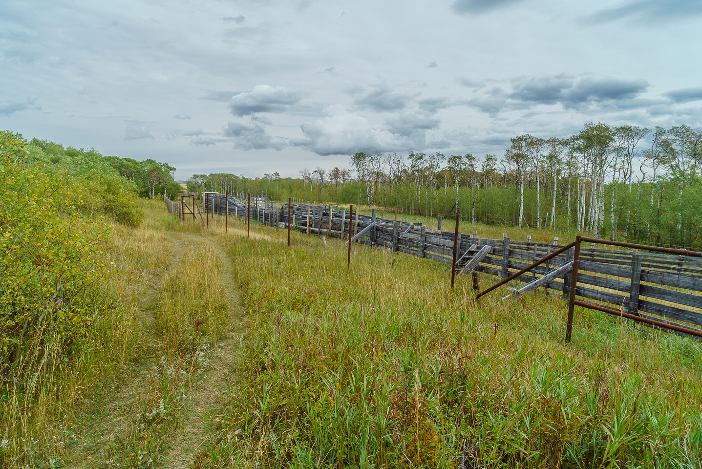 The bison fence / compound.