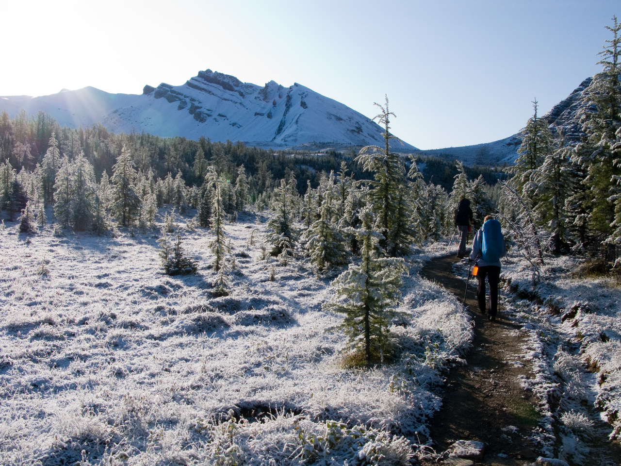 A frozen, white world on the trail up to Wonder Pass.