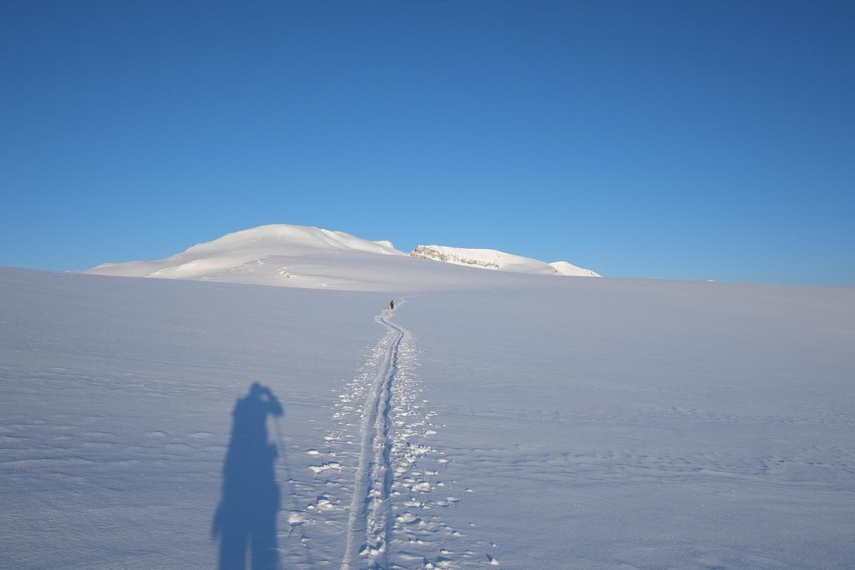 Skiing across the Wapta Icefield towards Mount Habel.