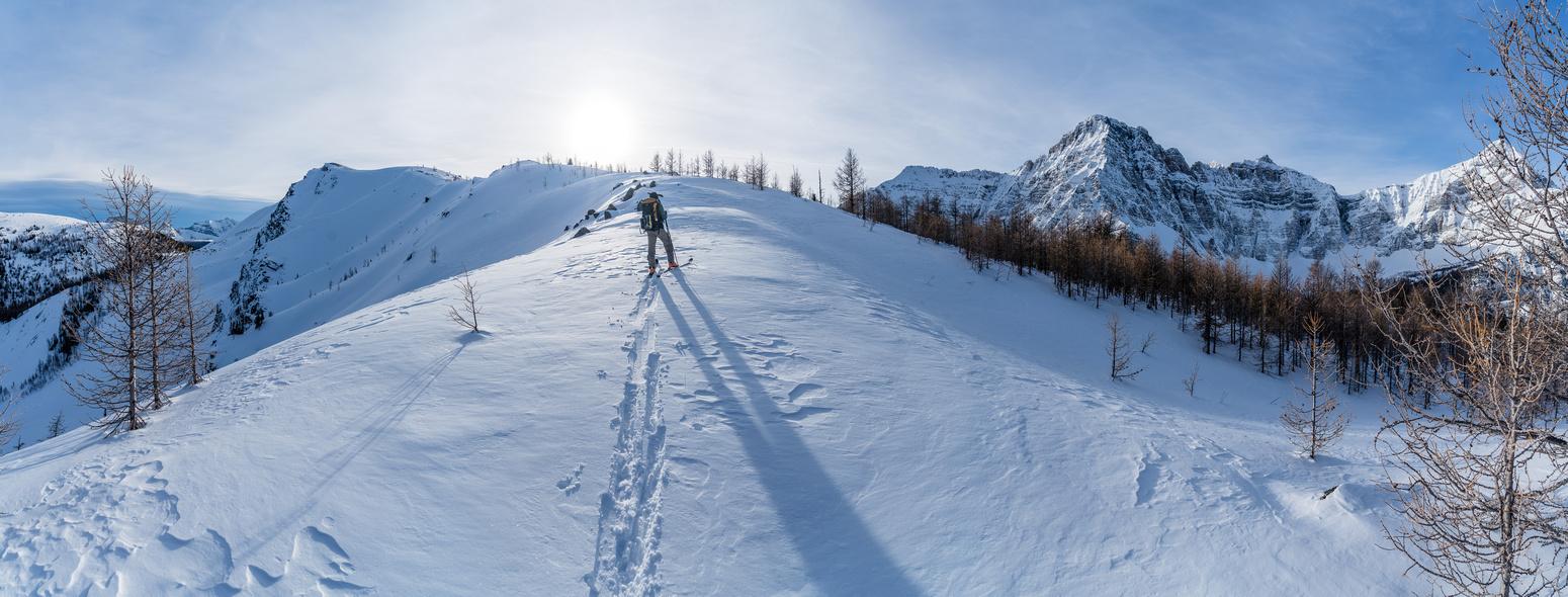Wietse breaks tree line. The false summit at distant left here.