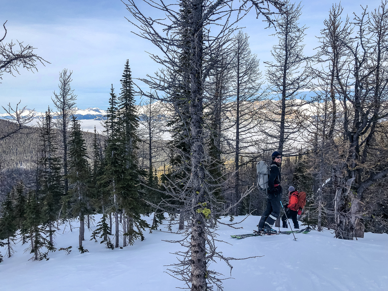 The treed north ridge.