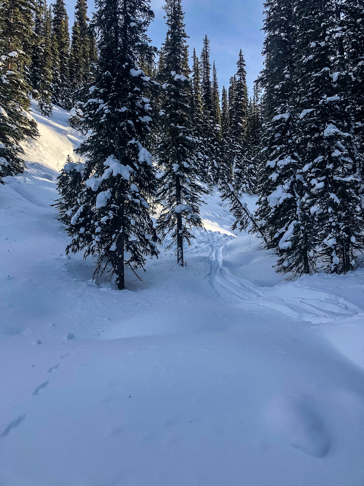 Looking back at the section of creek where we just triggered a small slide by skiing past the slope.