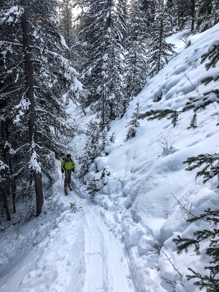 Wietse skins up a section of trail with obvious slope exposure.