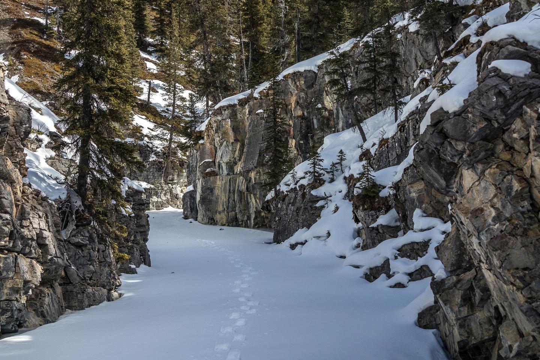 Magical hiking.
