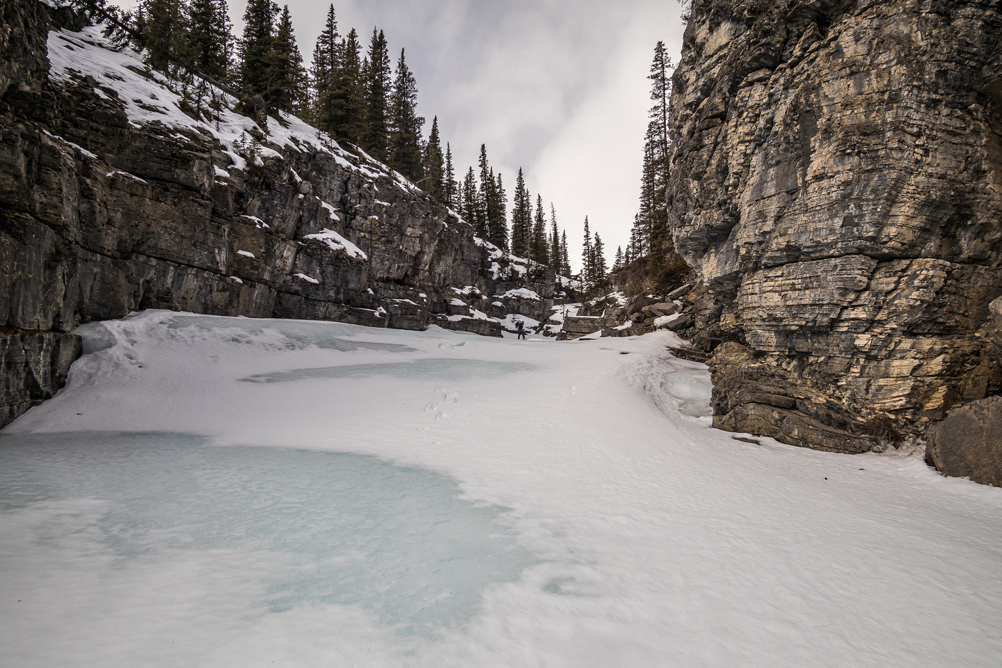 Snowshoes were essential for weight distribution and grip on the blue ice in the creek.
