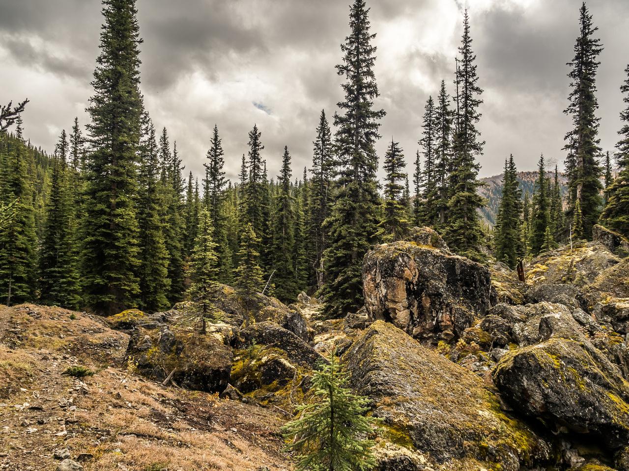 Interesting terrain in Golden Valley.