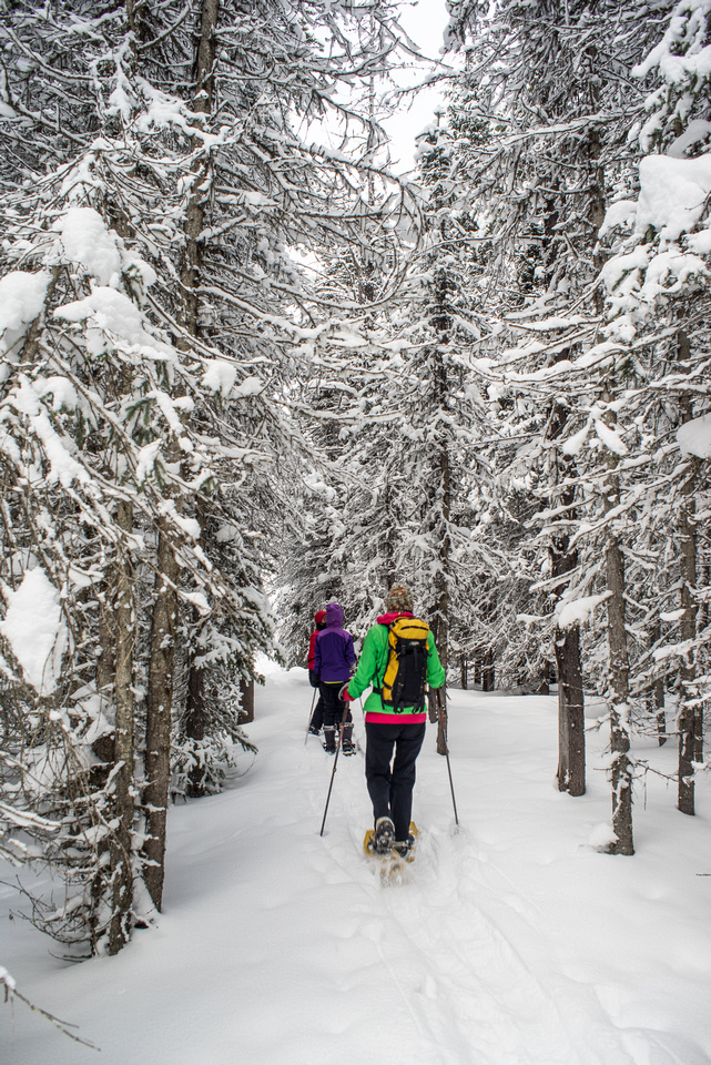A gorgeous day for snowshoeing as we make our way to the lower lake.
