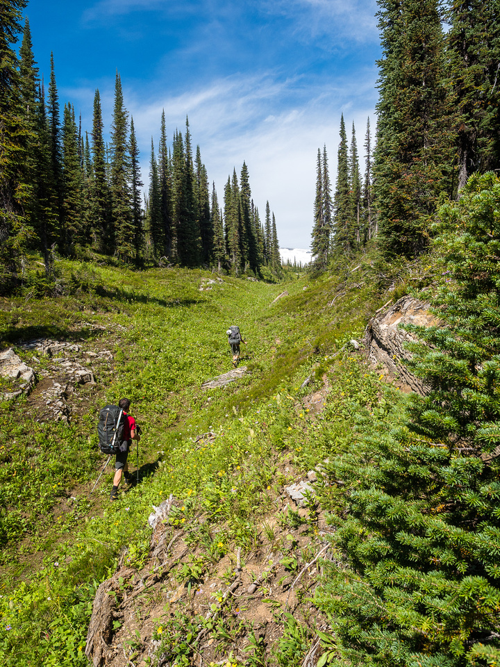 Following a nice terrain feature out of the forest and into the alpine meadows.