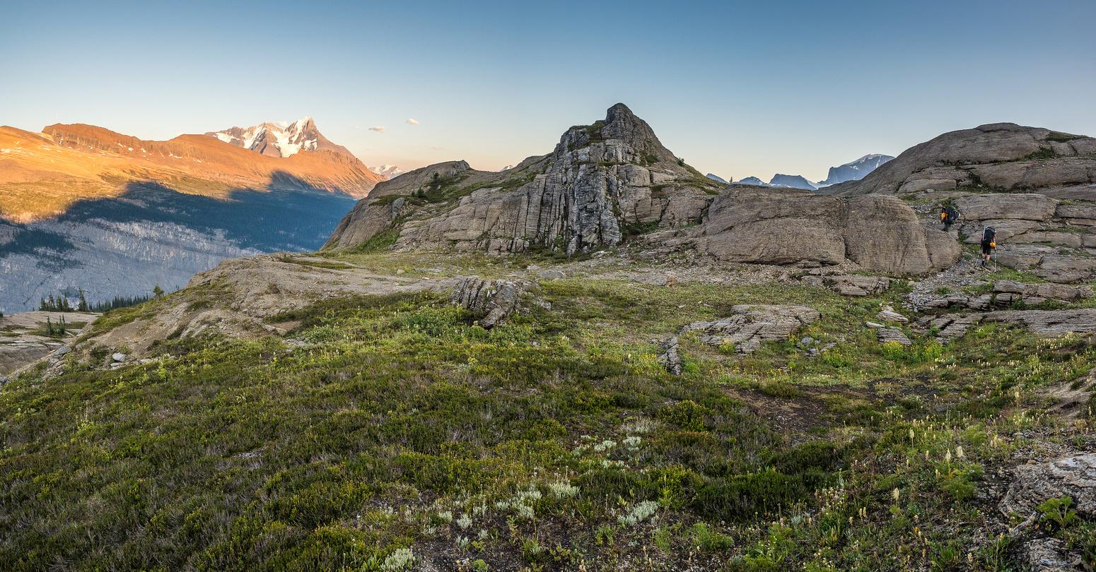 King Edward alpine meadows.