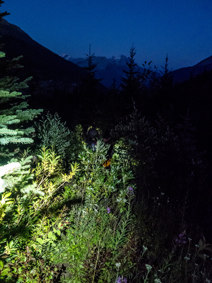 Hiking out in the bush at night. Good times.