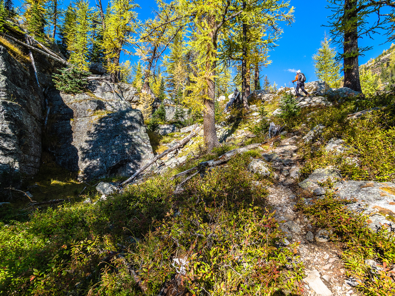 In order to climb the headwall, the trail does some interesting twists and turns.