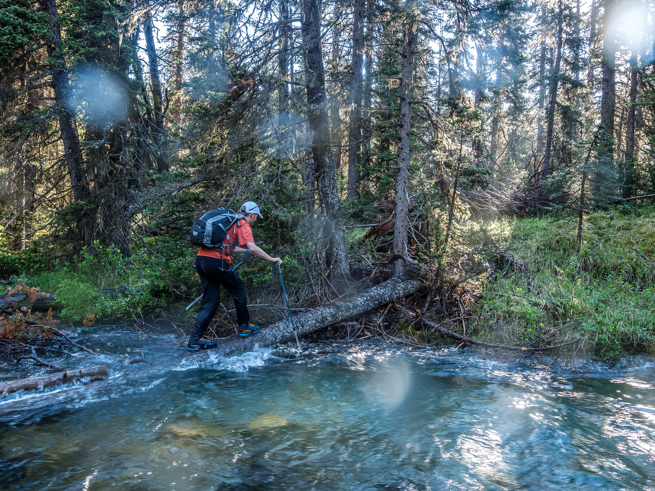 Our escape across Currie Creek. Right where Phil is the water was deeper than my 120cm poles could reach. And that log is slick too.