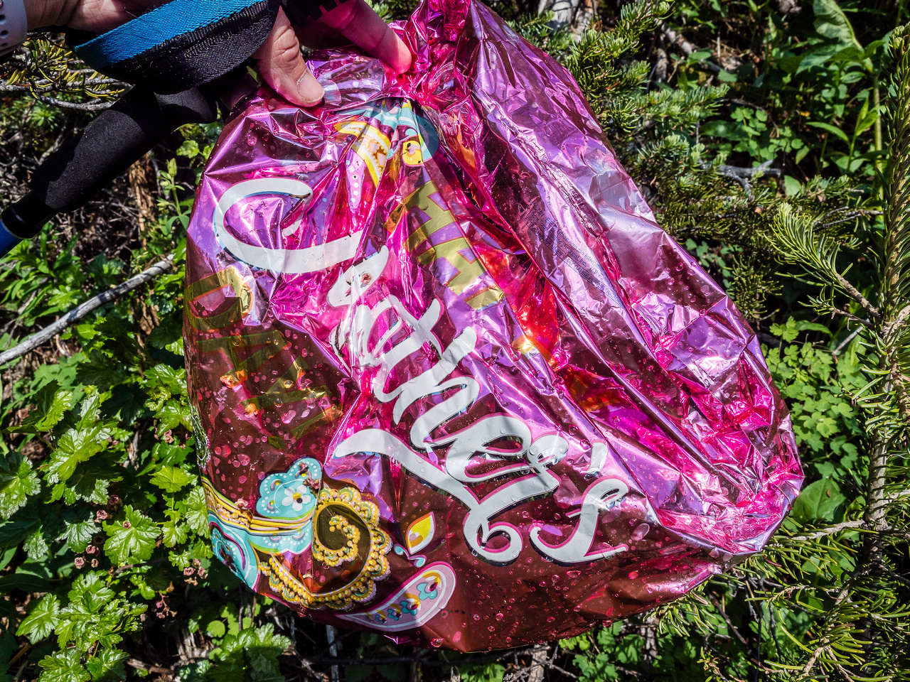 These Mylar balloons are showing up everywhere in the backcountry nowadays.