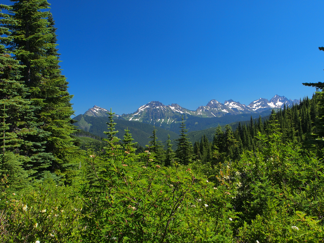 Looking at the Cheam Range. From left to right, Cheam, Lady, Knight, Baby Munday, Steward, The Still, Welch and Foley Peak.