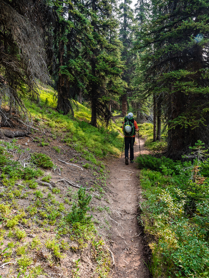A dry and pleasant stroll along the Skoki Pass trail.