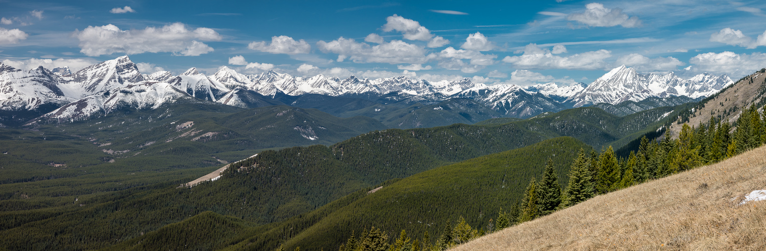 Excellent views west (L) and north (R) over Cat Creek Ridge towards Horned, Abruzzi, Bishop, Hill of the Flowers, Loomis, Odlum,Storelk, Highwood Ridge, Mist and Eagle Ridge.