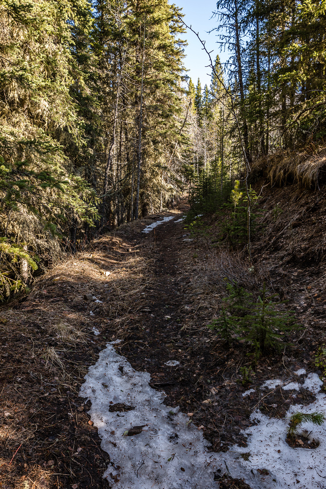 Although the trail starts out reasonably dry, there are lingering patches of freaking snow almost right away.