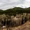 Lusk Ridge