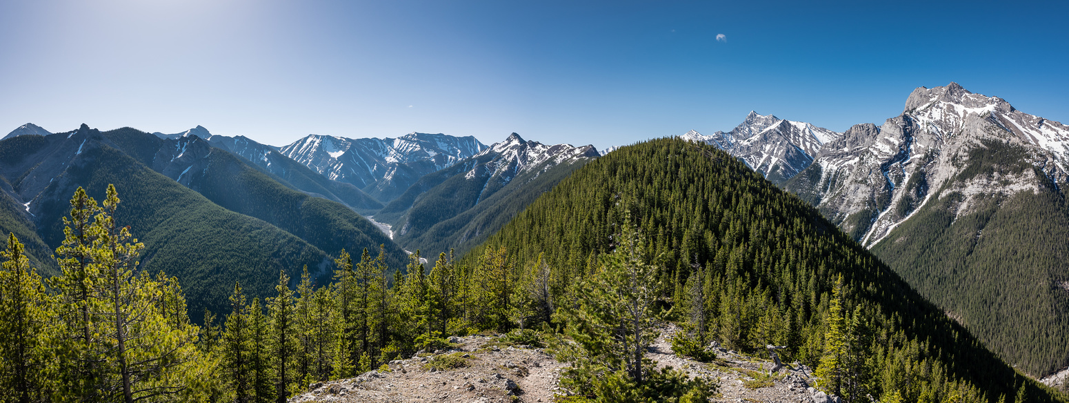 Looking ahead at the ridge - the summit visible far at distant center. Porcupine Ridge at left.