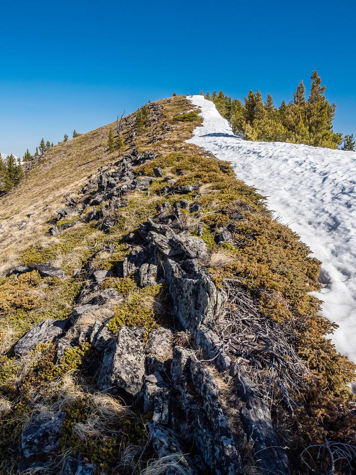 The ridge to the summit.