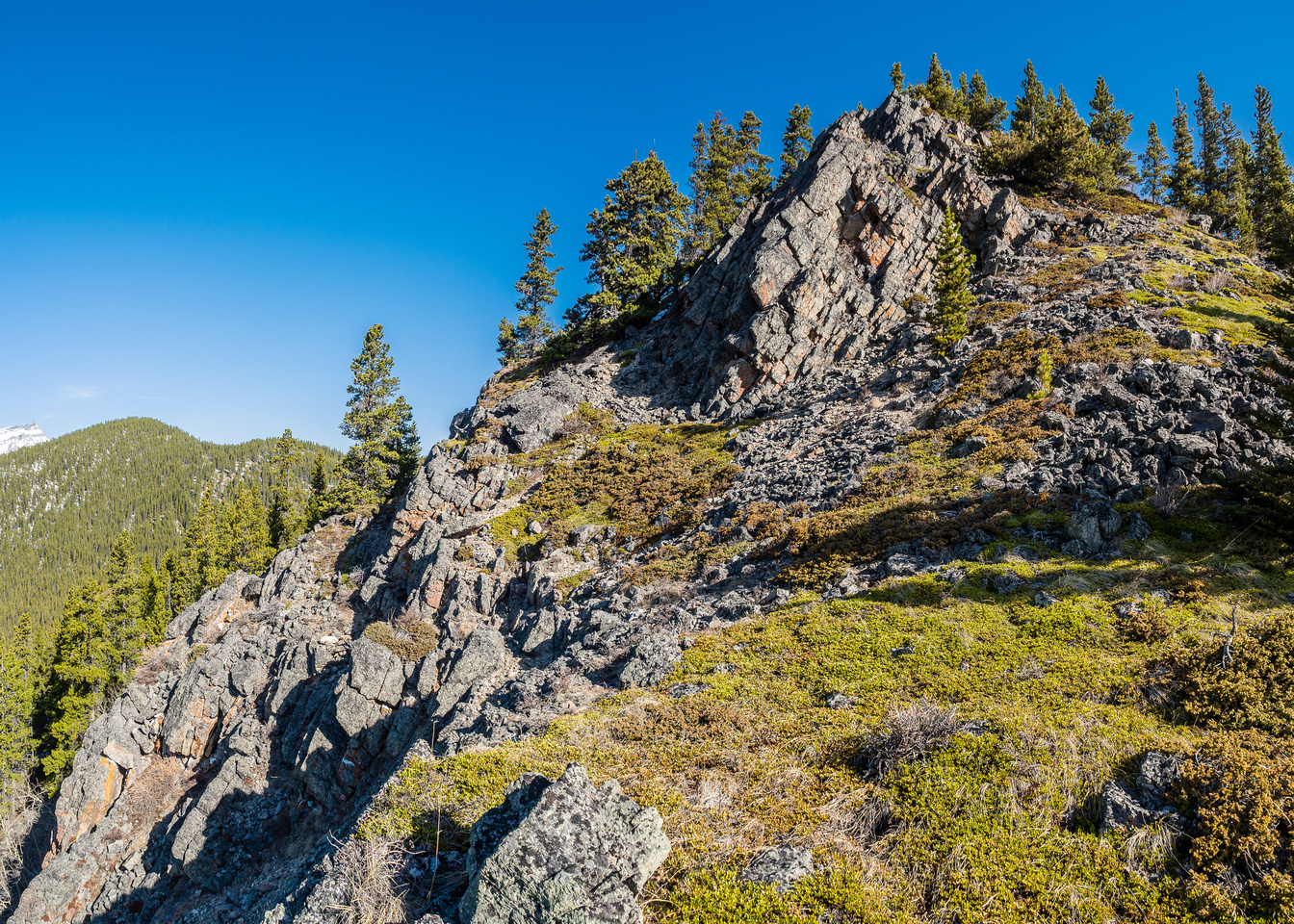 A lovely little bench where I spotted the dark colored Marmot before he ducked into the rocks.