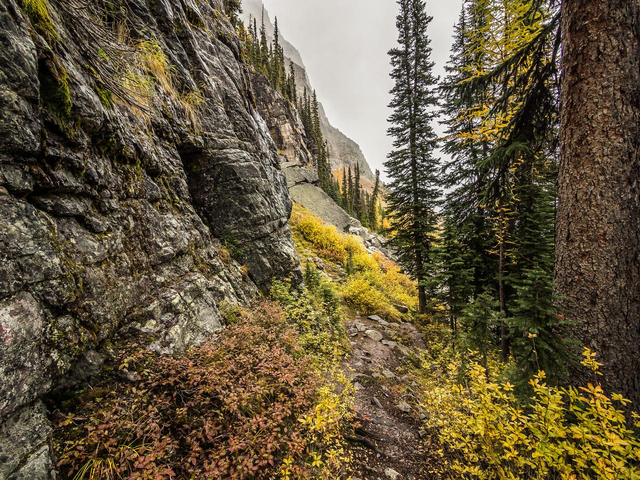 The descent trail.