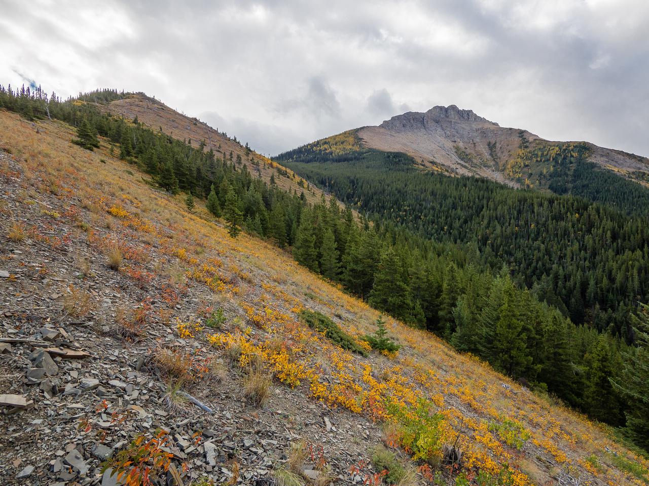 Views towards Southfork Mountain from the west ridge.