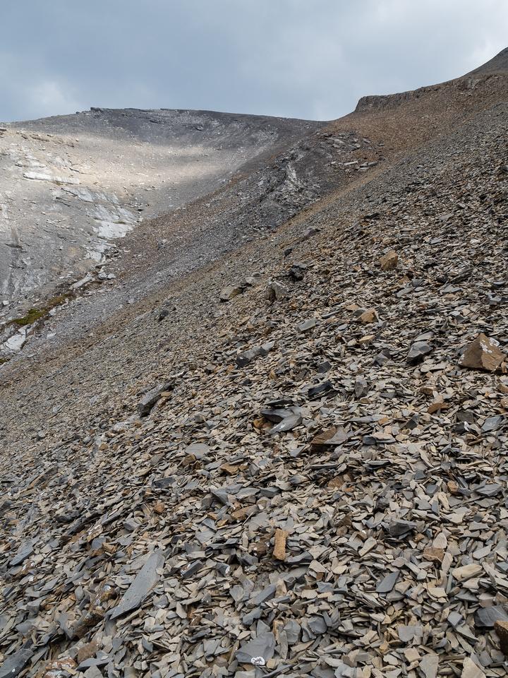 Looking back up easy descent slopes.