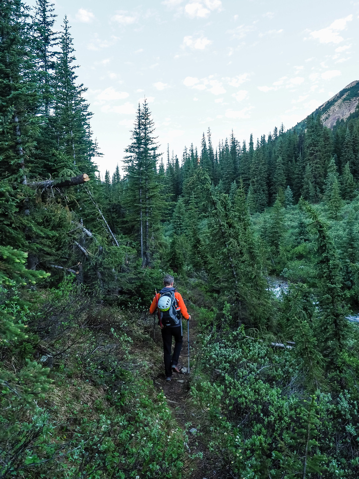Phil heads down the Helen Creek trail to our first water crossing of the day - across Helen Creek.