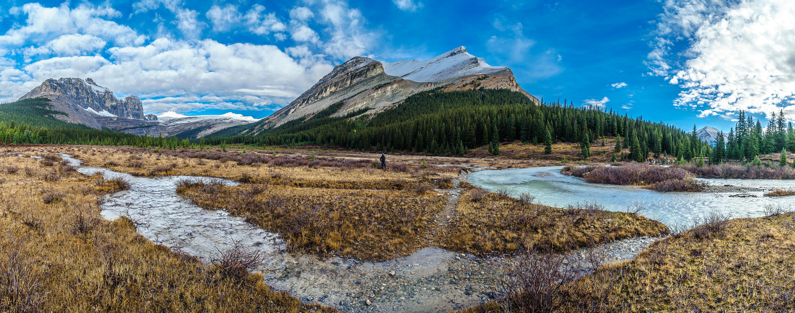 Shingle Flats with Drummond Creek coming in from the left to the Red Deer River on the right. Pipestone Peak on the left, Drummond on the right.