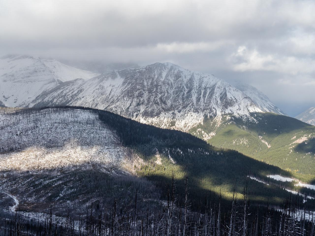 Mount McLaren.