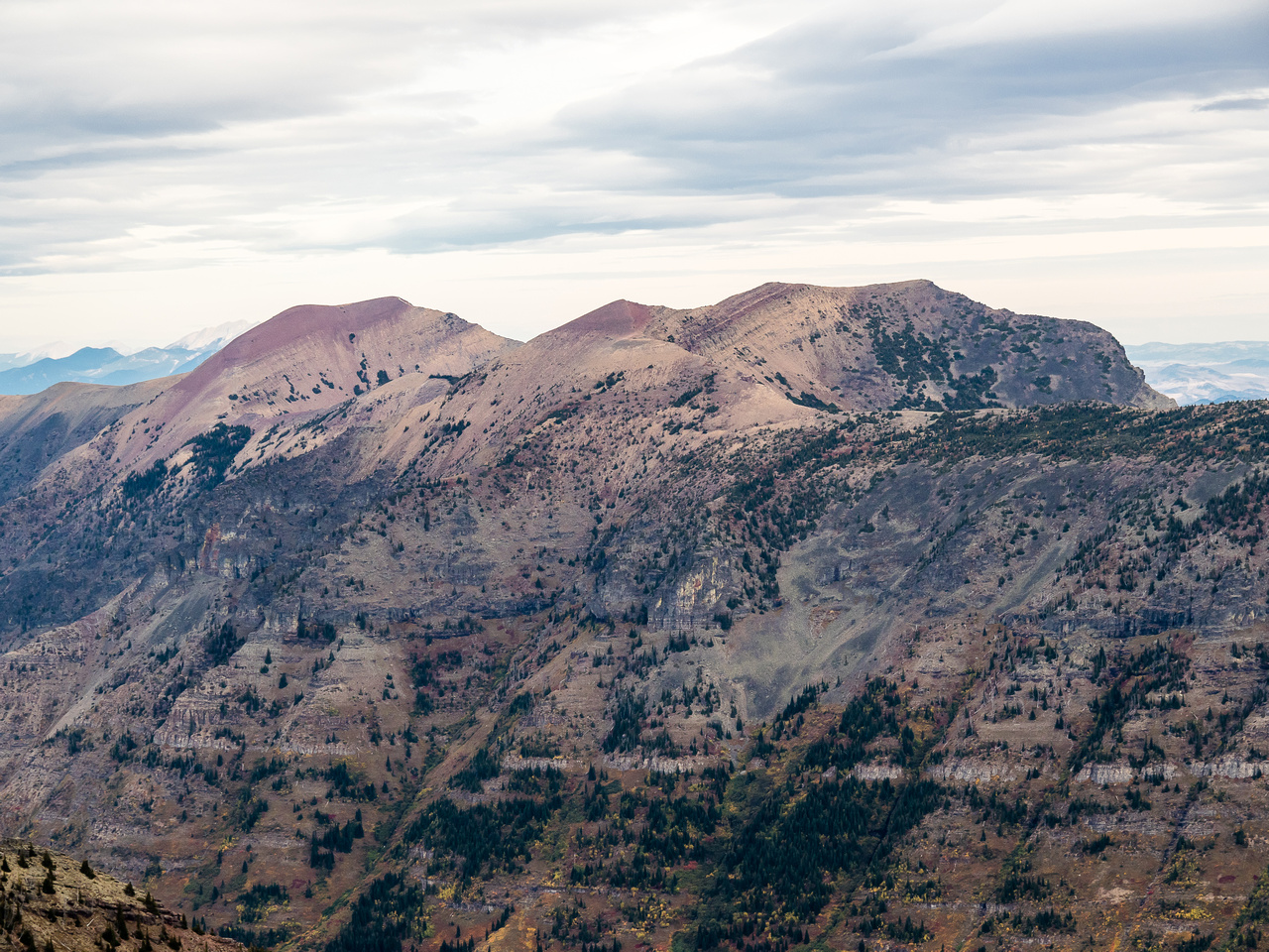 Southfork Mountain and Barnaby Ridge bring back really good memories of another solo fall trip I did in this area.