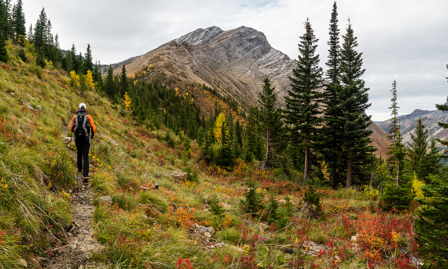 At this point we weren't sure yet how we were going to access Three Lakes Ridge from Rainy Ridge.