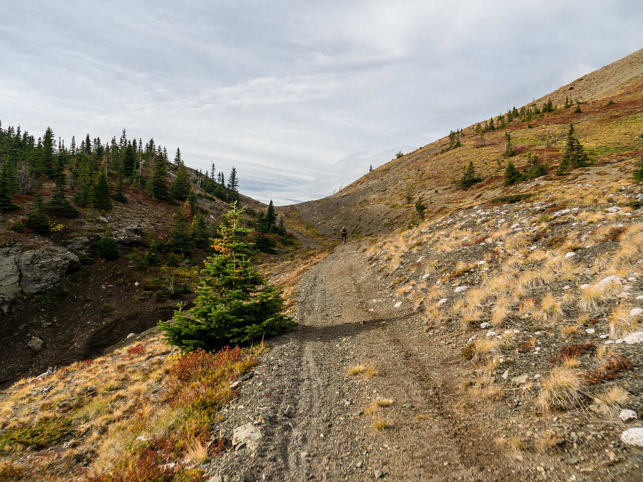 One more uphill section to the AB/BC border at the pass.