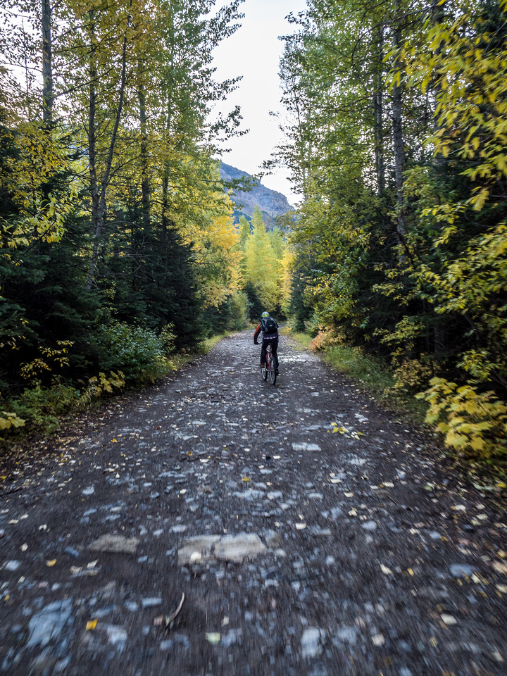 The initial road up the West Castle River is very easy, wide and fast riding.