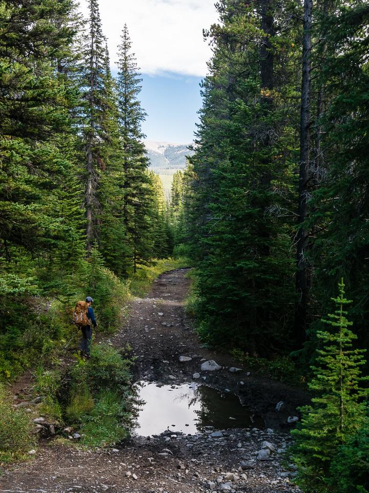 The Memory Lake Trail.