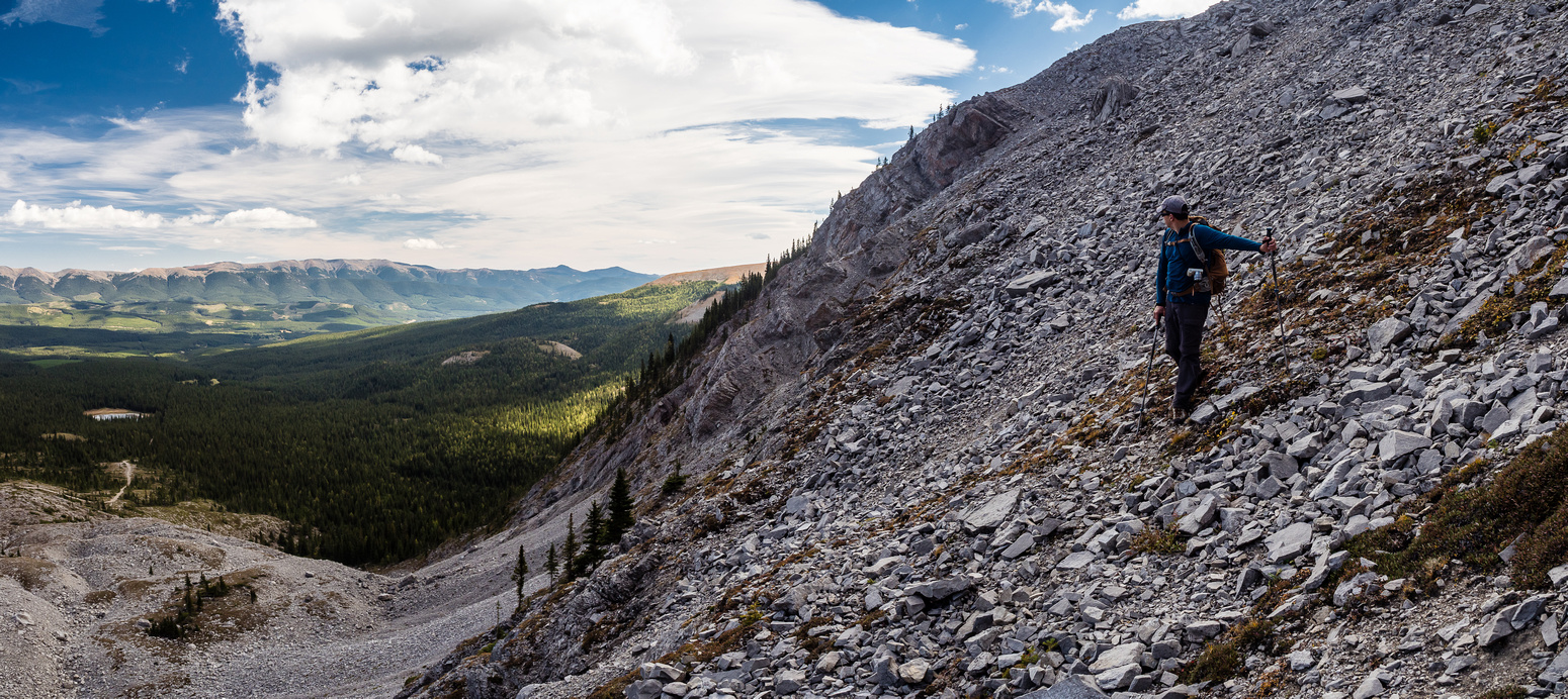 Looking back up the upper scree ramp with our treed ledge ascent route at mid-center.