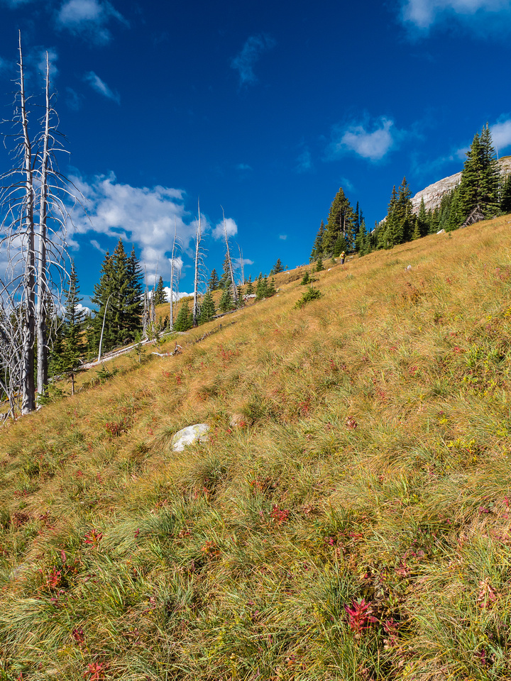 Traversing to the easy south ridge over grassy meadows.