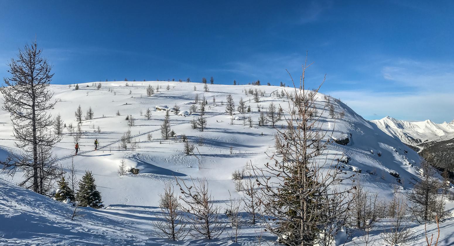 It was a perfect ski day.
