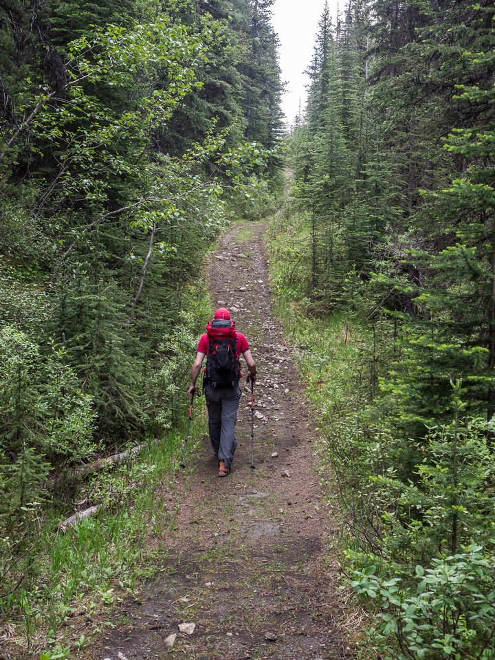 The rolling nature of the OHV trail means lots of uphill sections on return.