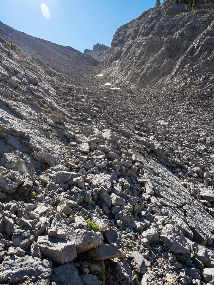 And there you go! The obvious NW scree gully up Mount Stelfox! The summit is not visible here yet.