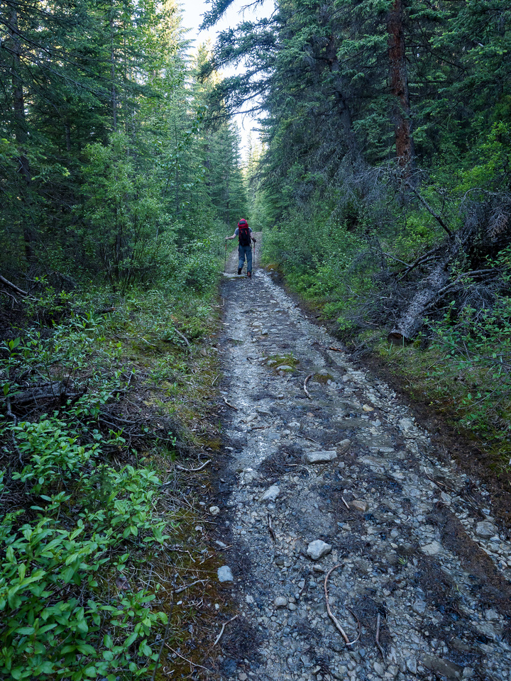 Mostly the OHV trail is very pleasant hiking.
