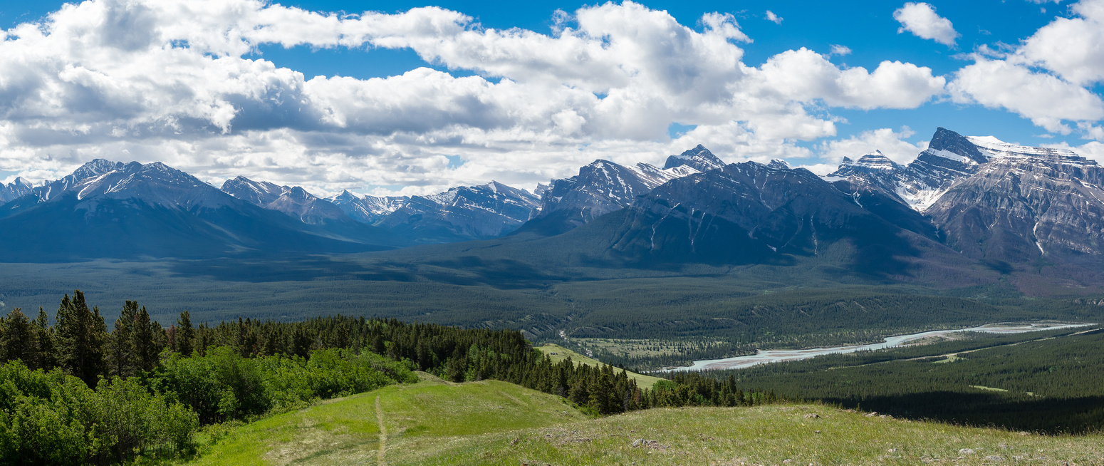 It doesn't take long before you get views like this, looking back over the North Saskatchewan River towards the Siffleur Wilderness Area.